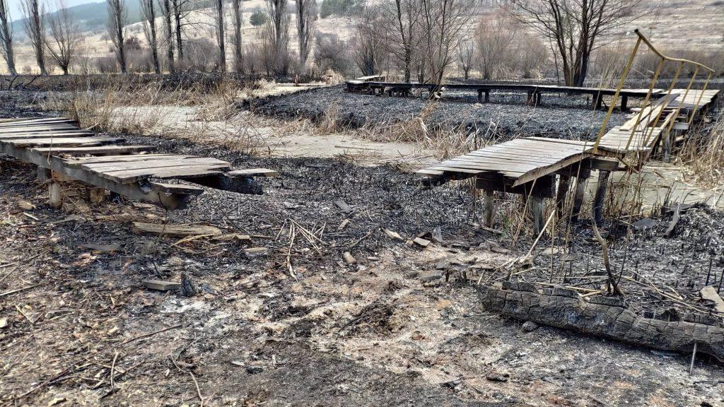 След пожара в Драгоманското блато