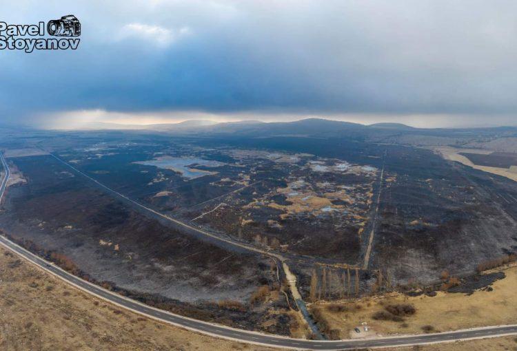 Read more about the article Последствия от пожара в Драгоманското блато и следващи стъпки