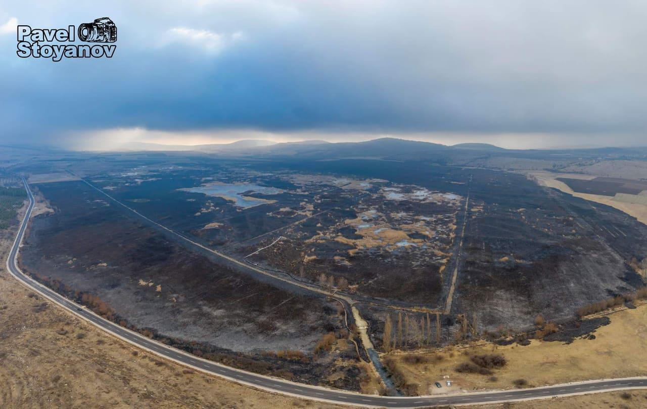 Последствия от пожара в Драгоманското блато и следващи стъпки