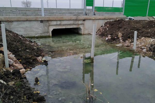 Становище на СДП БАЛКАНИ относно автомагистрала Европа и Алдомировско блато