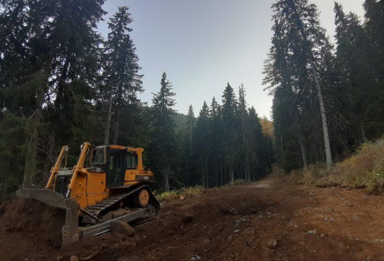 Read more about the article Сигнал за сечи и заравнителни дейности в района на Мусаленска пътека