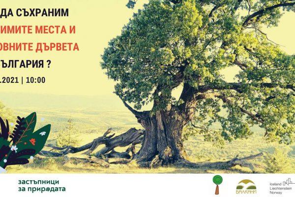 Обучение Как да съхраним любимите си места и вековните дървета на България?