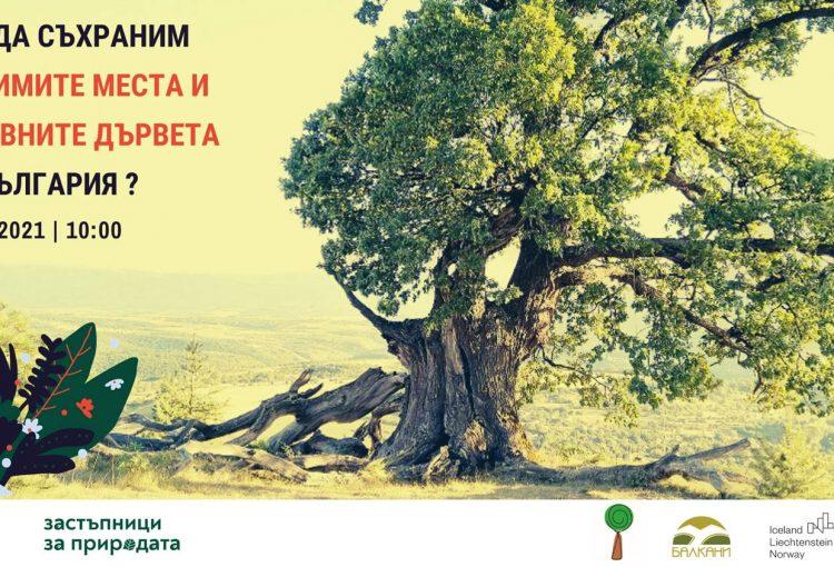 Read more about the article Обучение Как да съхраним любимите си места и вековните дървета на България?