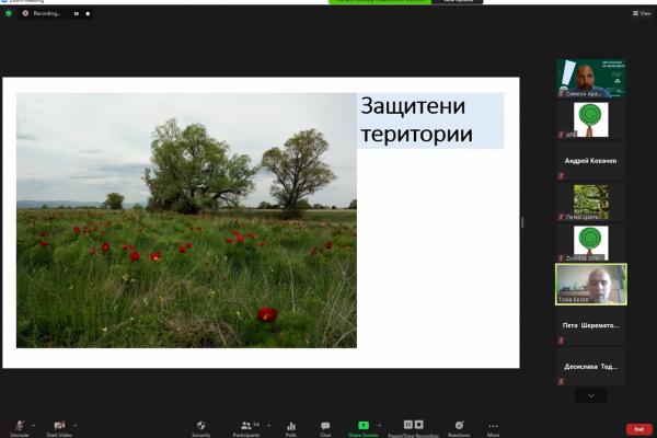 Запис от онлайн обучение за защита на вековни дървета и защитени територии