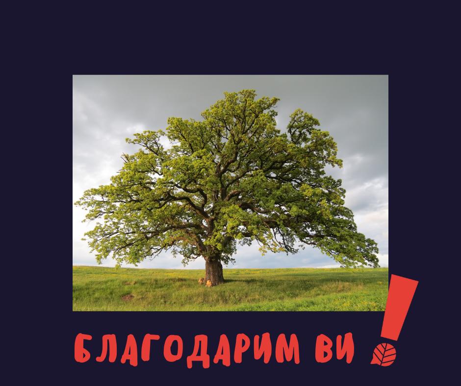 вековно дърво, благодарим ви!