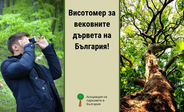 висотомер, вековно дърво, човек